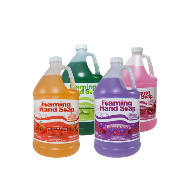 Veterinary Healthy Hands Foaming Hand Soaps Mixed Case of 4 Gallons
